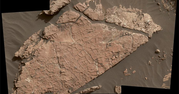 The images of cracked mud on Mars: Curiosity finds evidence of the red planet