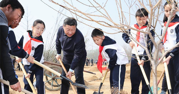 Xi attends tree planting activity