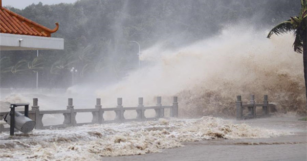 Several deaths, many injuries after typhoon ravages South China