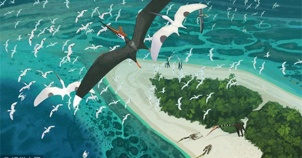 Fossils of pterodactyls from 66 million years ago discovered