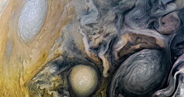 Stunning image captured by Juno spacecraft shows northern hemisphere of Jupiter