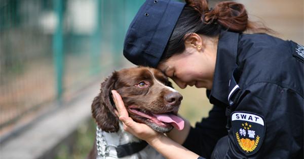 Woman makes progress training police dog