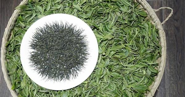 Intangible cultural heritage: Enshi Yulu Tea