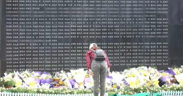 Overseas, domestic Chinese pay tribute to deceased