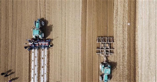 Self-driving tractors do farm work in Xinjiang