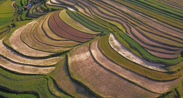 Scenery of terraces in NW China