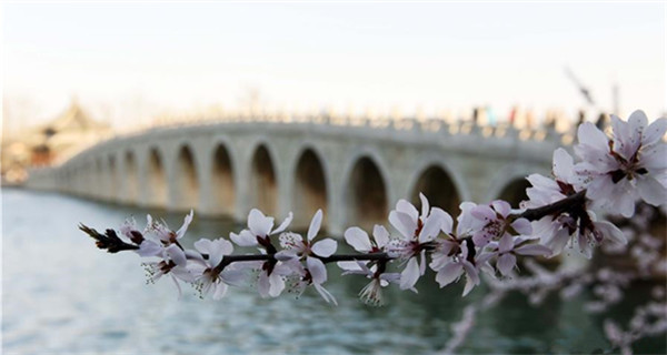 Spring scenery of Summer Palace in Beijing