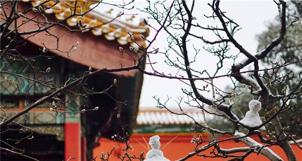 Spring snow blankets Forbidden City