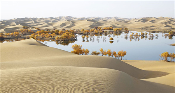 Desert reservoir improves ecological environment in Xinjiang