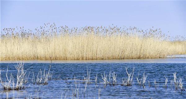 Ulunggur Lake in Fuhai County, NW China