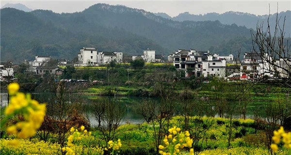 Flowery spring comes to Wuyuan, Jiangxi province