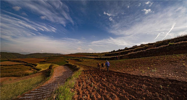 Scenery of Dongchuan Red Land in Yunnan