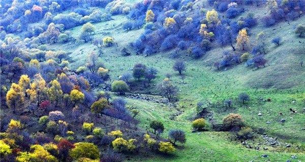 Colorful autumn of Laoye mountain in Gansu