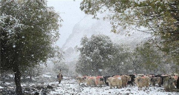 Snowfall hits Tianshan Mountains in Xinjiang