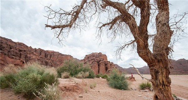 Amazing scenery of Tomur Grand Canyon in Xinjiang