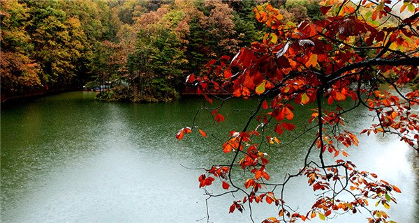 Autumn colors in Baiyunshan scenic area in Henan