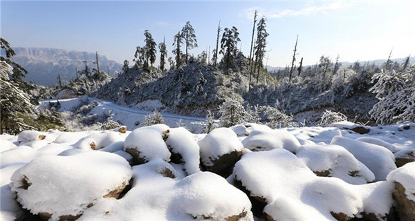 Snow-covered Longcanggou National Forest Park