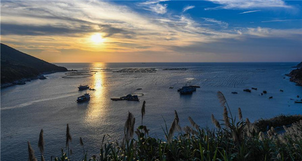 Scenery of Nanji islands in Zhejiang