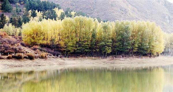 Late autumn scenery in Zhangjiankou, Hebei Province