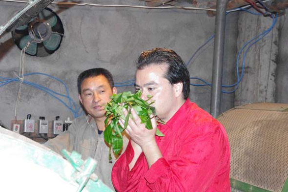 Warren Peltier savors fresh tea leaves at a tea farm in the Wuyi Mountains, Fujian province, in 2012. Photos provided to China Daily