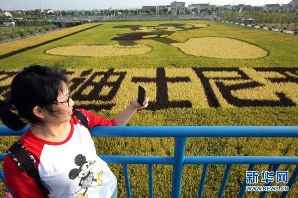 A visitor in a Mickey Mouse shirt takes a selfie in front of the paddy field. (Photo/Xinhua)