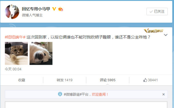 """Famous Micro-blogger """"Huiyi Zhuanyong Xiaomajia"""" gets more than 5900 comments for a single tweet about his cat and dog."""