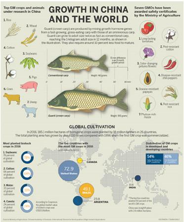 (Infographic by XIA DIWEN/CHINA DAILY)