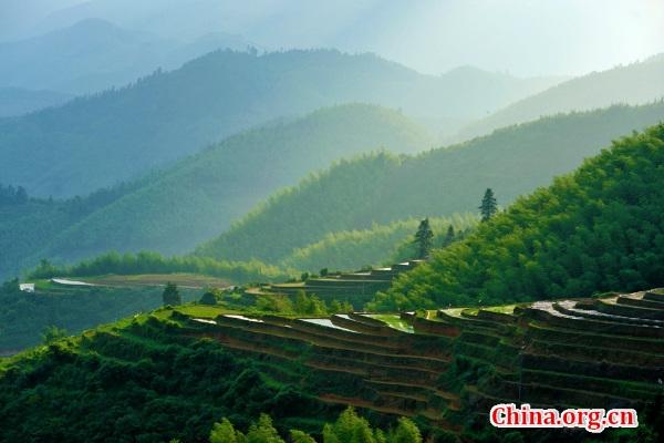 Photo shows the scenery of Shangbao Terrace at the Qiyunshan Mountain Natural Reserve in Chongyi, east China's Jiangxi Province. (Photo/China.org.cn)