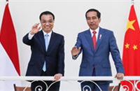 China, Indonesia sign cooperation agreements during Premier Li's visit