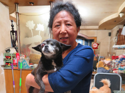Chengdu woman nurses 4-legged quake survivors