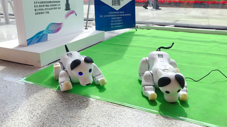 AI-robot integration key topic at China Robot Summit