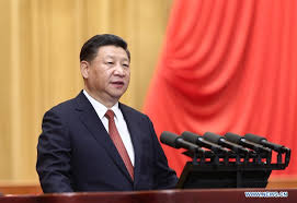 Xi stresses coordinated efforts in central, local institutional reform