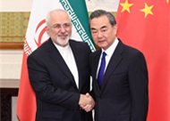 Chinese state councilor, Iranian foreign minister hold talks