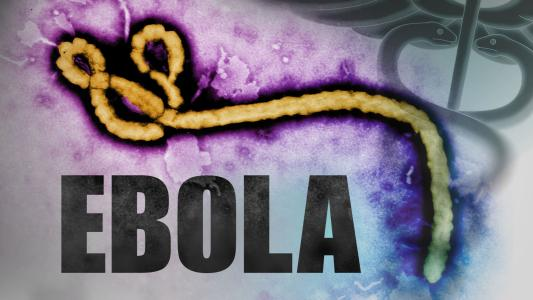 Aussie researcher develops rapid test for Ebola to fight deadly outbreak