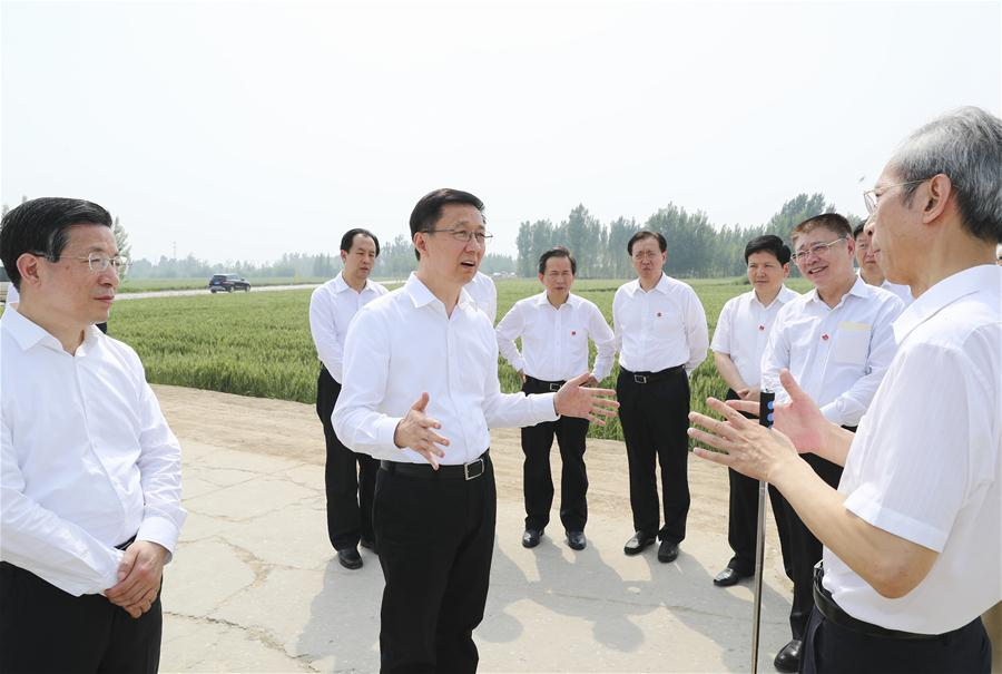 Chinese vice premier calls for high-quality development of Xiongan New Area