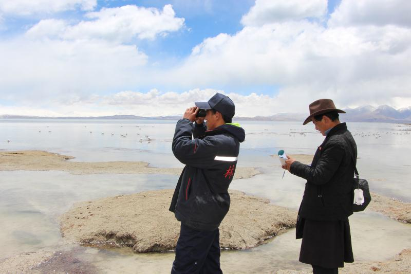 Health of wetland a priority of Tibet
