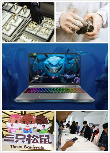 Pictured from the top right are jewelry retailer Chow Tai Fook Enterprises, rice dumpling brand Wufangzhai, PC maker Mechrevo, snack supplier Three Squirrels and smartphone company Xiaomi's Mijia, a newly launched subbrand for its family of products. (Photo/chinadaily.com.cn)