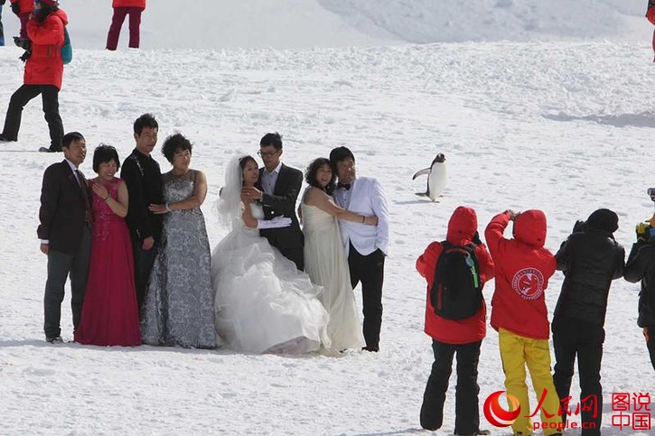 China ranks fourth highest source of tourists to Antarctica