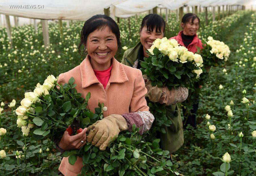 flower business in bangladesh Looking forward for a pleasant business with u all  send flowers to bangladesh - same day flower delivery our bangladesh flowers catalog has been curated by best .