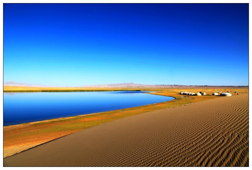 Beautiful 'Golden Sea' in Qinghai (1/12) - Headlines, features, photo...