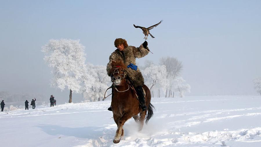 Image result for eagle hunting Manchu