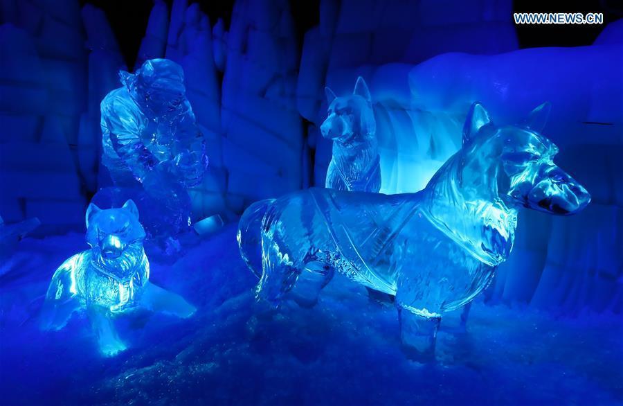 ice magic show held in belgium 1 10