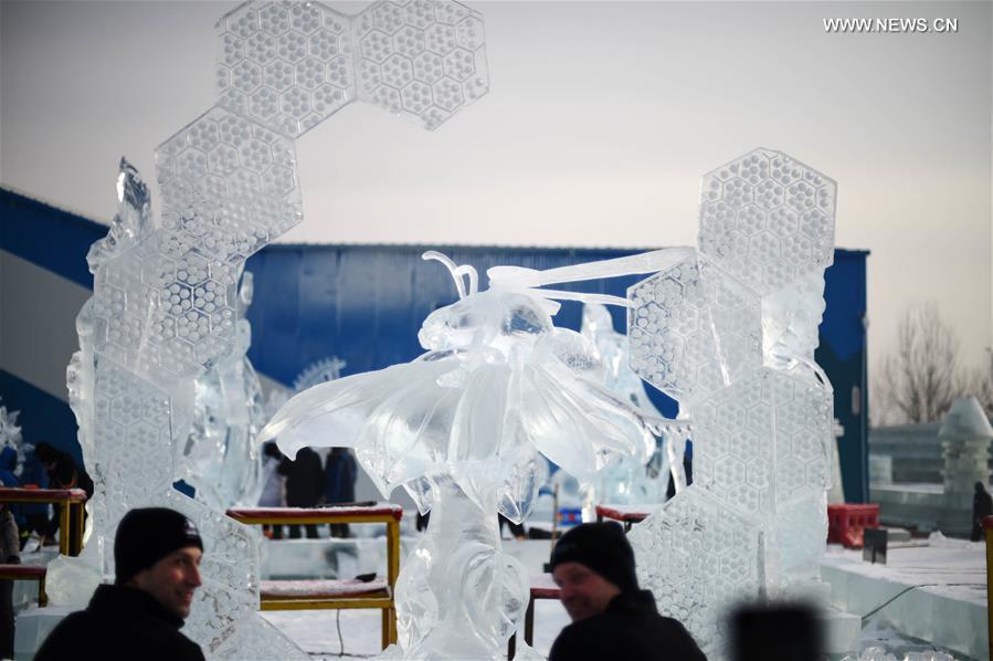 белье конкурс ледяных скульптур в италии помнить