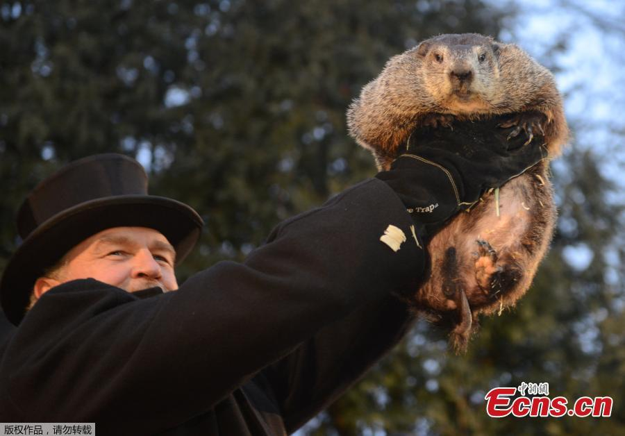 phil connors from groundhog day Groundhog day 2018: did punxsutawney phil see what a hype, bill murray said as weatherman phil connors in groundhog day georgia's groundhog.
