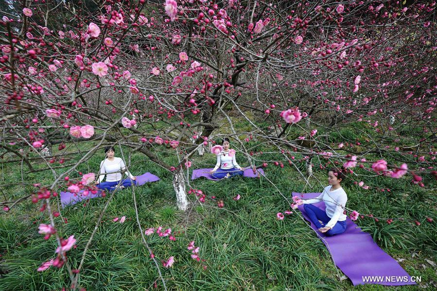 Yoga Lovers Practise Yoga At Plum Garden In C China 4 5