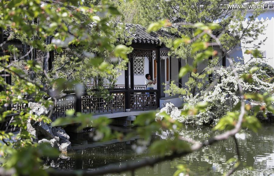 Scenery Of Chinese Scholar 39 S Garden At Snug Harbor On Staten Island In New York 1 15