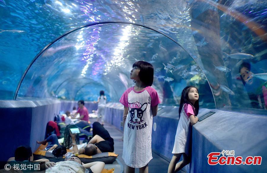 壁纸 海底 海底世界 海洋馆 水族馆 900_583