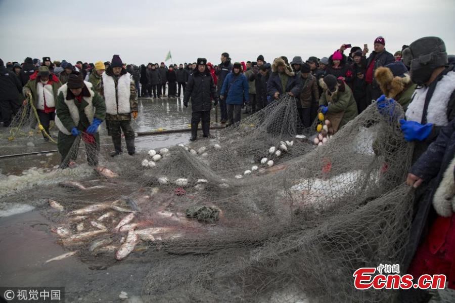 Participants attend the fish auction at Chagan Lake, Northeast China\'s Jilin province, on Dec 28, 2017. The first fish caught at the start of winter fishing season in frozen Chagan lake fetched record-breaking 918,888 yuan ($140,654) in Northeast China\'s Jilin province on Thursday. Instead of modern fishing methods, the Chagan Lake winter fishing continues to use traditional methods such as cutting holes in the ice and using manpower to place the net instead of machines to protect the lake water from being contaminated by modern machines. Before the start of the season, a ceremony is held where fishermen pay tribute to the nature by holding traditional dances and other activities(Photo/VCG)