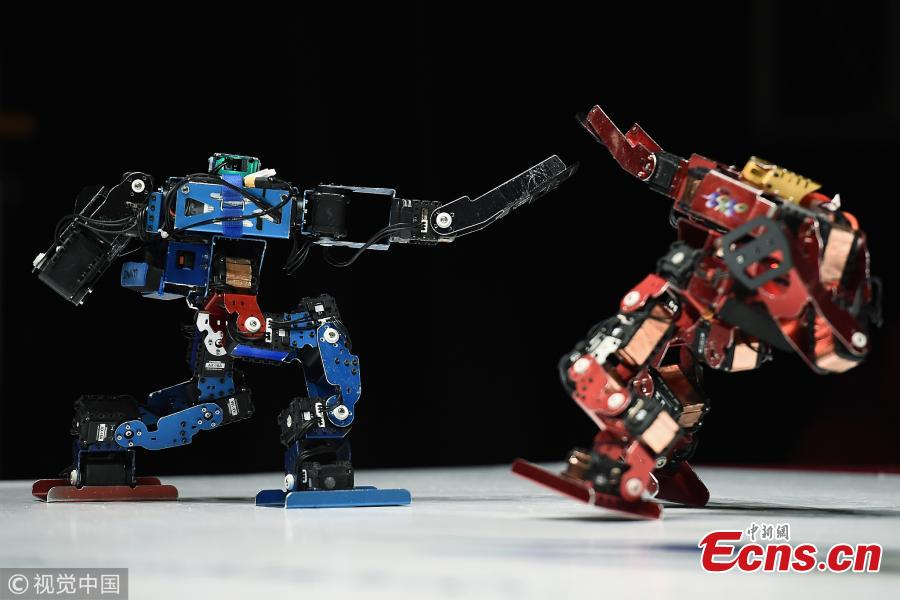 Robots fight during the 32nd ROBO-ONE tournament in Tokyo, Japan, Feb. 25, 2018. According to the organizer, the ROBO-ONE, held by the Biped Robotics Association, is a robot fighting competition for bipedal walking robots, aiming to improve the robotic technology and spread the popularity of bipedal walking robots. (Photo/Agencies)
