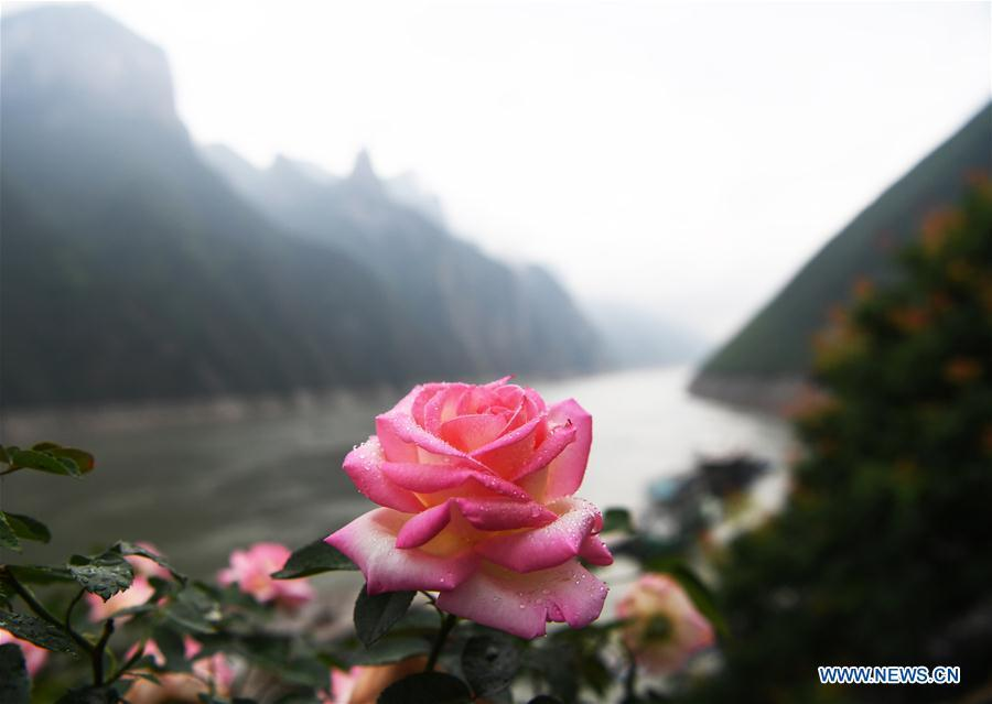 Photo taken on May 25, 2018 shows the scenery of Wuxia gorge in southwest China\'s Chongqing Municipality. (Xinhua/Wang Quanchao)